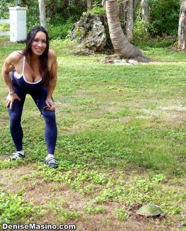 Denise masino early xmas female bodybuilder