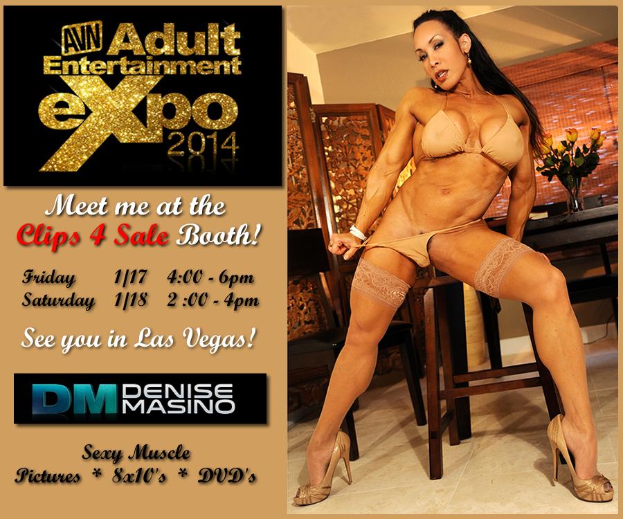 AVN 2014